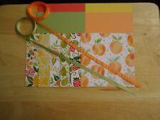 """Stampin Up FRUIT STAND  6 X 6"""" Designer Paper Card Kit RIBBON"""