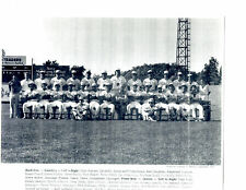 1980 SYRACUSE CHIEFS 8x10 TEAM PHOTO NEW YORK AINGE BOSTON CELTICS BASEBALL
