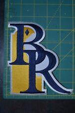 Wilmington Blue Rocks DELAWARE MiLB Throwback Minor League Baseball Jersey Patch
