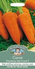 Mr Fothergills - Vegetable - Carrot - Chantenay Red Cored 2 - 2000 Seeds