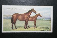 Hunter Horse    Champion Mare  Original 1915 Vintage  Card ## VGC