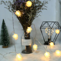 3 Meter 20 Light Christmas Pine Cones LED St Lights Battery Operated Fairy  O5V2