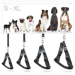 Dog Car Seat Belt Harness L Large 69cm, XL XLarge 84cm