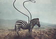 A1|Abstract Zebra Poster Print A1 Size 60 x 90cm Safari Animal Wall Gift #14892