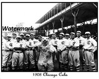 MLB 1908 Chicago Cubs Team Picture Black & White 8 X 10 Photo Picture