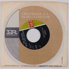DAVE DEE, DOZY, BEACKY, MICK & TICH: Legend of Xanadu IMPERIAL 45 Rock NM-