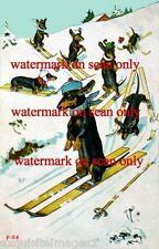 Vintage Cute Dressed Dachshund Dogs Skiing Downhill~Snow~NEW Large Note Cards