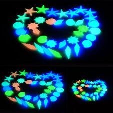 In The Dark Mix Luminous Stone Beach Conch Sea Shells Fish Tank Decor Aquarium