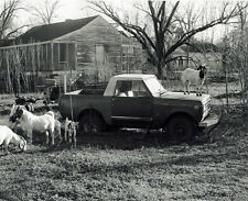 Rodney, Mississippi - Goats on Truck