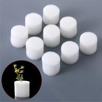 Garden Supplies Soilless Hydroponic  Seed Trays Nursery Sponge  Flower Pots