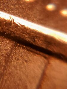 2018-D Double Die Reverse Lincoln Cent Extremely RARE