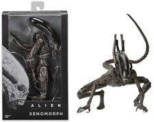 "Alien Covenant Xenomorph 10"" Action Figure NECA IN STOCK"