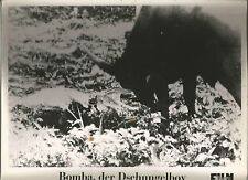 AF Bomba, der Dschungelboy
