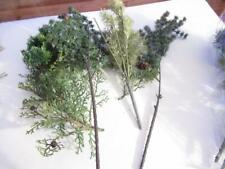 """G SCALE - LARGE TREE LIMBS ETC - APPROX 17"""" TALL-  EXC- W71"""