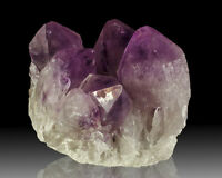 "5.5"" Rich Royal Purple AMETHYST Large Sharp Crystal Cluster Bolivia for sale"