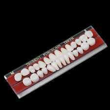 New 1 Set 24 # Porcelain Teeth Alloy-Pin Tooth Dental Materials Dentures Colors