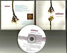 SCHTUM Skydiver 1995 USA PROMO Radio DJ CD Single OSK 7326 Band Photo