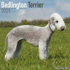 Bedlington Terrier Calendar 2021 Premium Dog Breed Calendars