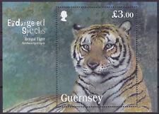 Guernesey 2012 ESPÈCES EN VOIE DE DISPARITION-Tigre du Bengale MS um MBS 1406 Cat £ 7.25