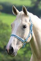 WESSEX NYLON HEADCOLLAR HORSE EQUESTRIAN RIDING TACK HANDLING