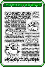CAPRICORN RC STICKER A5 LAB 1/8 F1 1/10 TESLA ELECTRIC NITRO CAR HARD WHITE B