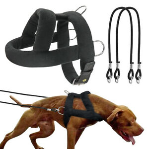 Large Dog Weight Pulling Harness and Leash Heavy Duty Training Sled Vest Pitbull