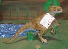 Velociraptor Papo 2005 Dinosaur #55003 OoP Original Version Rare New w Tag Free
