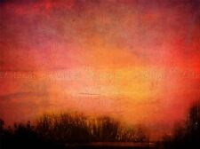 SUNRISE RED ORNAGE YELLOW TREES PHOTO ART PRINT POSTER PICTURE BMP1478A
