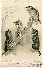 Chats.cats.balançoire Trébuchet. Swing Trebuchet. Gaufré.embossed
