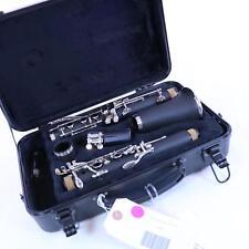 Andino by Luis Rossi Plastic Bb Clarinet BRAND NEW