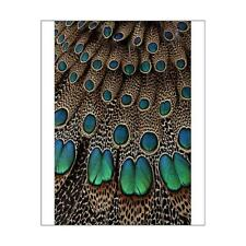 "14800451 10""x8"" (25x20cm) Print Malay Peacock Pheasant Wing a Tai..."