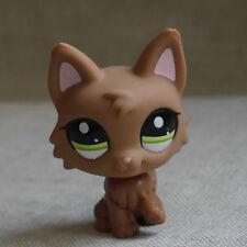 Dark  Timber  #2440 Wolf Pubby  LPS mini Action Figure Littlest pet shop
