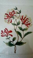 BEAUTIFUL AND ORIGINAL HONEYSUCKLE ETCHING. SIGNED LIMITED EDITION