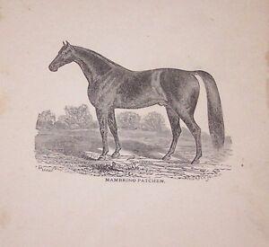 ORG LATE 1800'S BOOKPLATE PRINT MAMBRINO PATCHEN-HORSE-FARM-(A2)