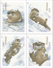 *NEW* 2021 Otters in Snow (Booklet Block of 4) 2021 MNH - *(After 10/12/21)*