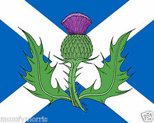 SCOTTISH FLAG WITH THISTLE A5   IRON ON T SHIRT TRANSFER