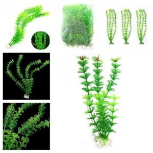 Live Aquarium Moss Christmas Aquatic Plants Landscaping Home Fish Tank Decors