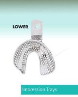Dental Instrument Impression Tray Edentulous Perforated Lower Premium ITRLEDPL2