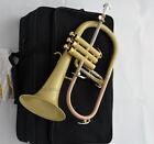 2020 Professional Satin finish Bb Flugelhorn NEW FLUGEL Horn With Case