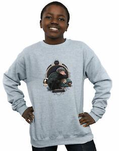 Fantastic Beasts Boys Baby Nifflers Sweatshirt