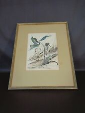 Framed Original Watercolor By A. Starkweather