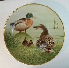 Collector Water Bird Plate Eric Tenney Mallard Hand decorated 24K gold Porcelain