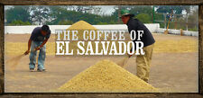 2 lbs El Salvador SHG Santa Maria RFA Coffee Beans Light Roast, Fresh Daily