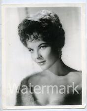 1960s vintage 8x10 promo  photo Actress Kaye Elhardt  Glamour