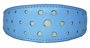 Light Blue Padded Leather Whippet Dog Collar Greyhound Dog Collar Circle Glitter