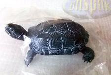 KOW Nature Techni Colour Turtle Chinemys reevesii chinese pond turtle black#4