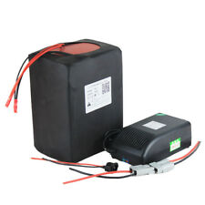 60V28Ah Lithium LiFePO4 Battery Pack for 1800W EBike Scooter with 5A Charger BMS