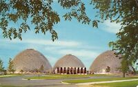 Milwaukee WI New Horticultural Conservatory~Plants on Exhibit Postcard 1965