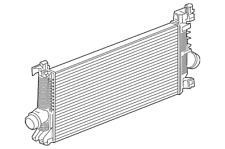 Genuine GM Inter-Cooler 13330387