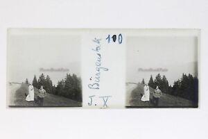 Bürgenstock Switzerland Photo Stereo T2L9n60 Plate Glass Vintage